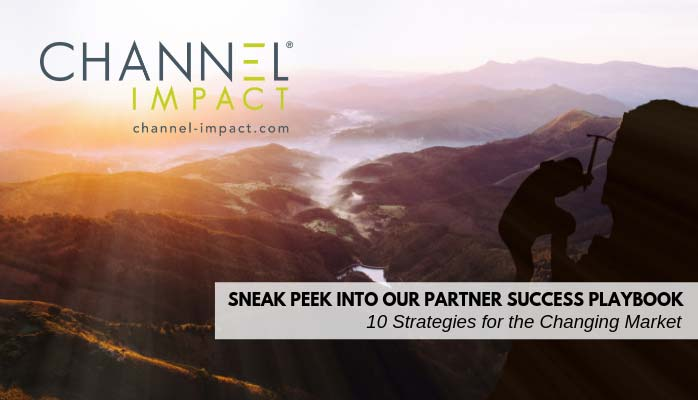 Partner Success Playbook graphic with canyon